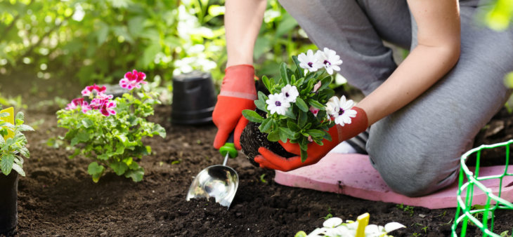 preventing-knee-pain-during-spring-gardening